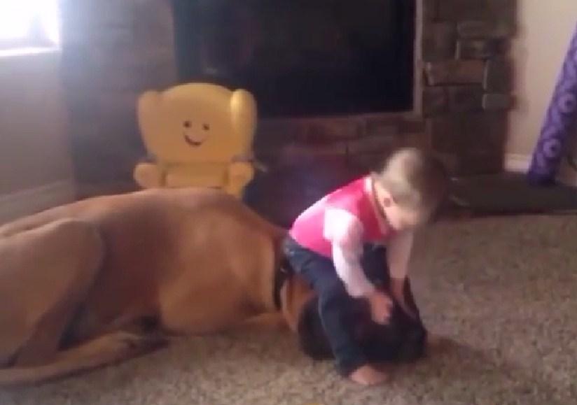 I am dancing on my dog's hear