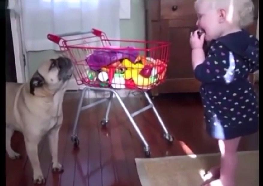 Love to teach my dog