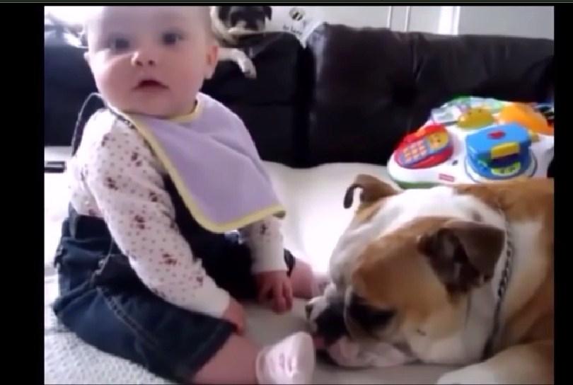 speech with my dog