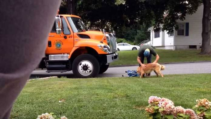 garbage man helps