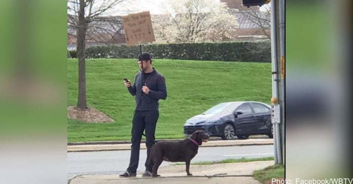 Canine hero makes sign, waits on street corner for days to help missing dog