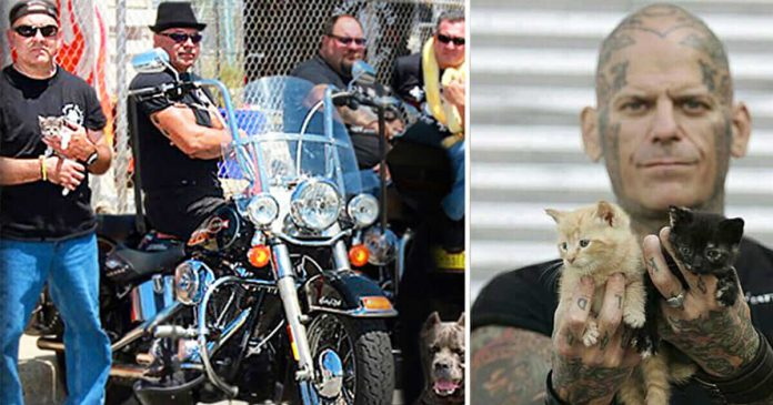 A Biker Gang Confronts Violent Pet Owners To Rescue Desperate Animals From Them PAWS PLANET