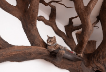 Man Creates Indoor Fake Tree For A Cat, And The Master Approves Of It PAWS PLANET