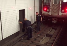 Police Stopped A Train And Jumped Into Subway Tracks To Rescue A Scared Cat PAWS PLANET