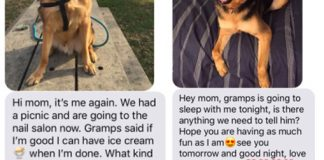 Daughter Asks Dad To Watch Her Dog, Gets The Perfect Texts From Him