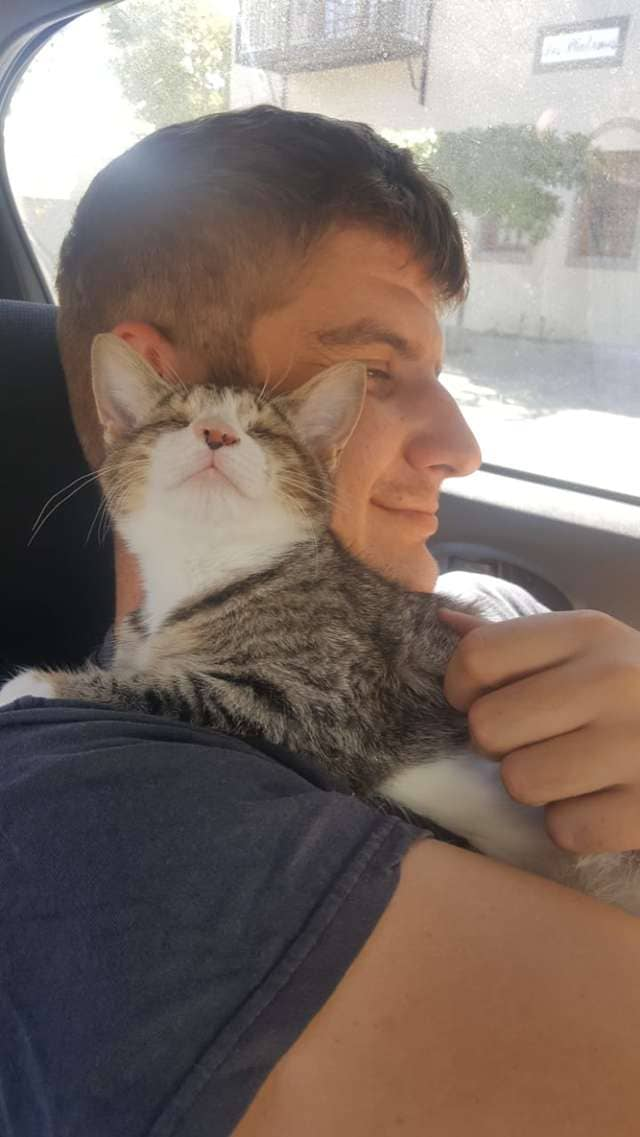 Blind Abandoned Kitten Can T Stop Hugging Her New Dad
