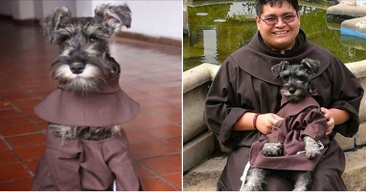 Stray dog wandered into a monastery, so they made him an adorable honorary Friar