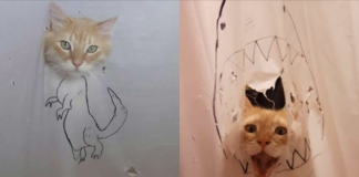 Woman Creates A New Drawing Every Time Her Cat Destroys A Shower Curtain