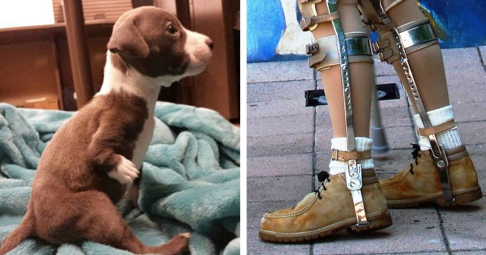 Young Boy With Disability Picks Deformed Puppy Out Of Litter, Saves Animal's Life