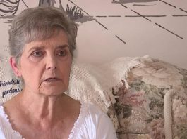 79-Year-Old Woman Gets Jail For Feeding Stray Neighborhood Cats
