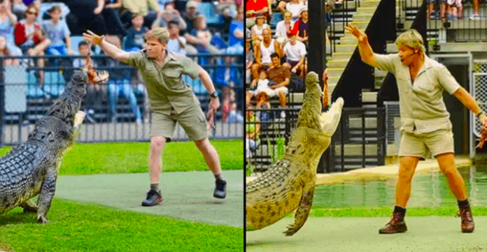 Steve Irwin's Son Feeds Same Crocodile In Same Place As His Dad, 15 Years Apart