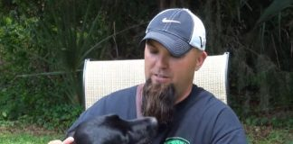 Veteran Has Panic Attack During Interview, Then His Service Dog Leaps Into Action