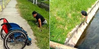 Disabled Man Gets Out Of His Wheelchair To Save Kitten Stuck In Drain Risking His Own Life