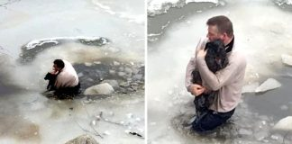 Man Risks His Life, Jumps Into Frozen Water To Save Drowning Dog