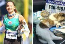 Marathon Runner Pauses To Rescue Stray Puppy And Carries Him For 19 Miles