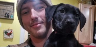 Deaf Guy Adopts A Deaf Rescue Puppy And Teaches Him Sign Language