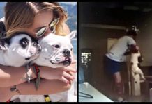 Woman Catches Fiancé Hitting Her Dogs On Hidden Camera, Calls Off Wedding Immediately