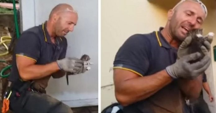 Firefighter Cries Tears Of Joy After Rescuing Newborn Kittens Trapped In A Courtyard