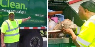 Owners Threw Their Dog in a Garbage Truck to be Crushed to Death