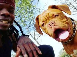 Veteran's Service Dog Stolen During Burglary - He's Begging People to Help Him Find Her