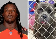 NFL Player Dumped His Dog on the Side of Busy Road Cause He's 'Expecting A Baby' -
