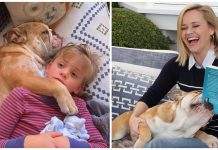 'At least we have dogs!' Reese Witherspoon shares precious photo of her cuddly dog during COVID-19 isolation