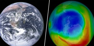 The Earth's ozone layer is healing, scientists say